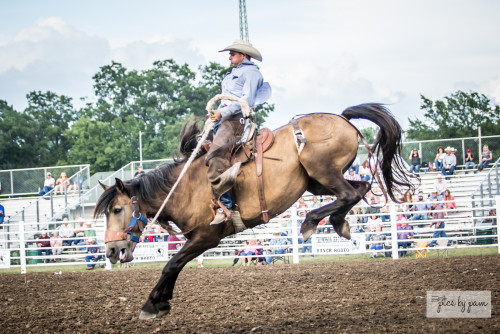 Ranch Rodeo (2)