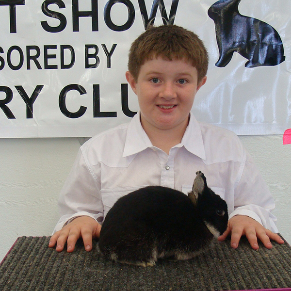 best of breed riley haver rabbit show cfyvl 15