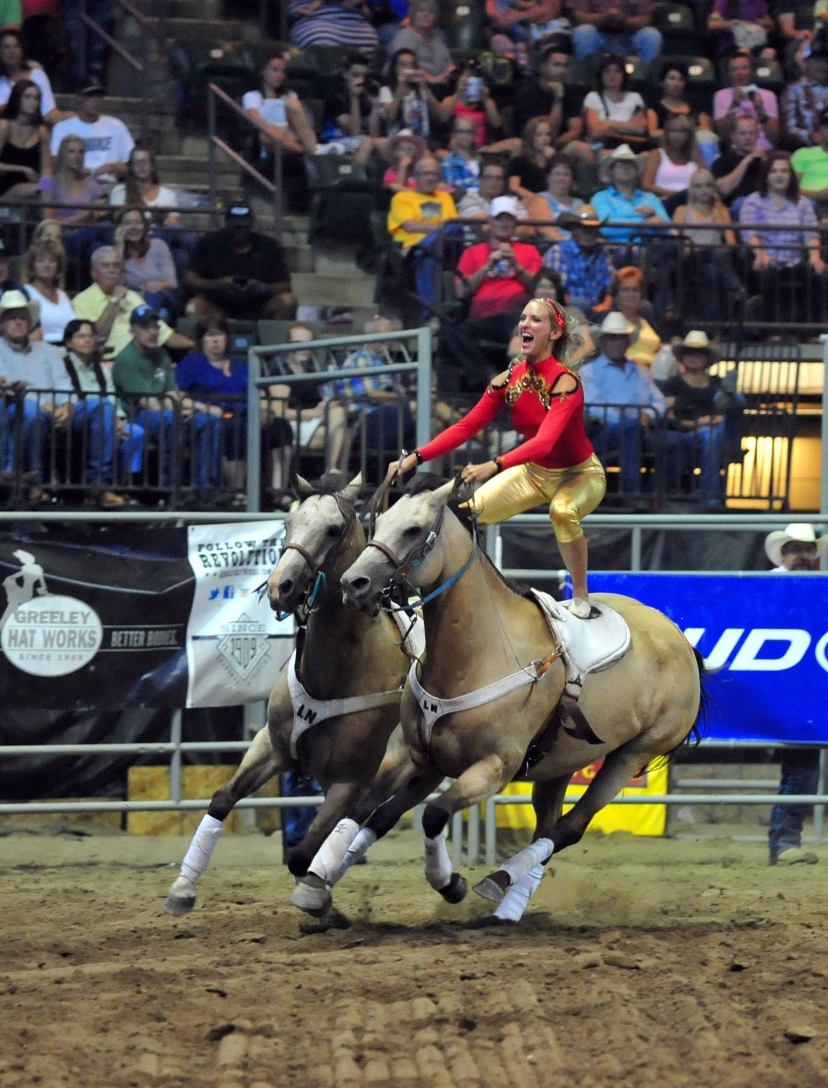 Livestock auction near me find your local service for Where to go horseback riding near me