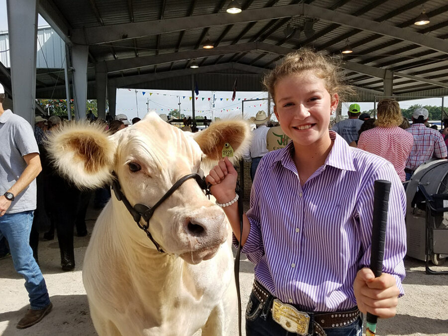 Inter-State Fair beef show results announced