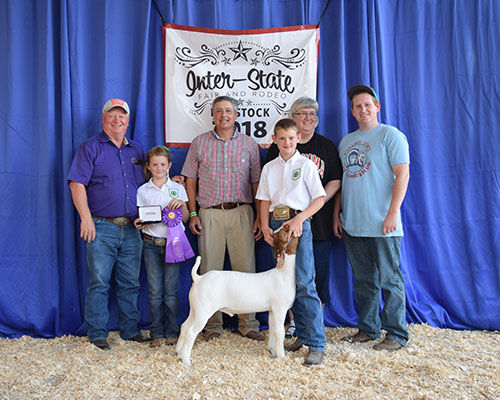 Oklahoma youngster loves goats, shows grand champ