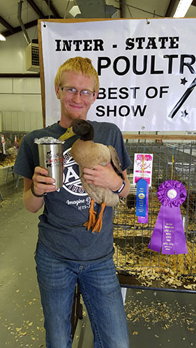 ISFR poultry show held Wednesday