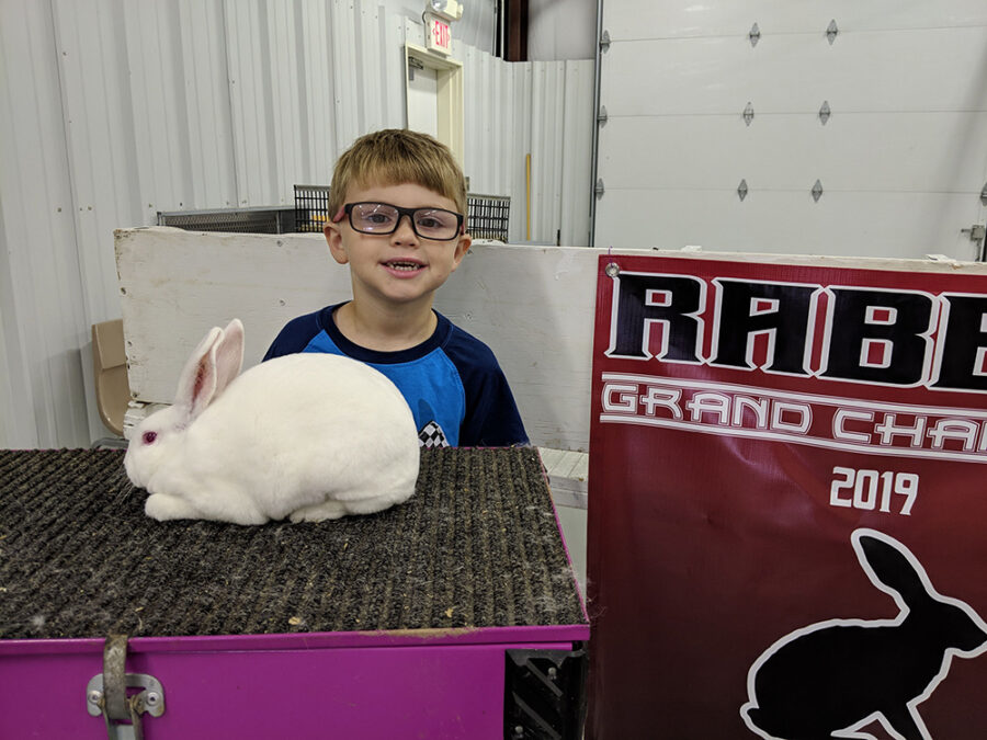 RABBIT SHOW HELD AT INTER-STATE FAIR
